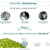 La Chef Irina C. Herrera comparte su cocina y receta para el #RetoMoringa