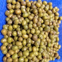 Sabes cocinar los granos de Soja? Prueba con Cookeo
