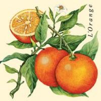 Bizcocho de Naranja junto a un riquísimo Macchiatto S2One Touch ¿Crees que es Fácil?