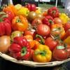 Cómo Blanquear verduras en Solo 7 pasos